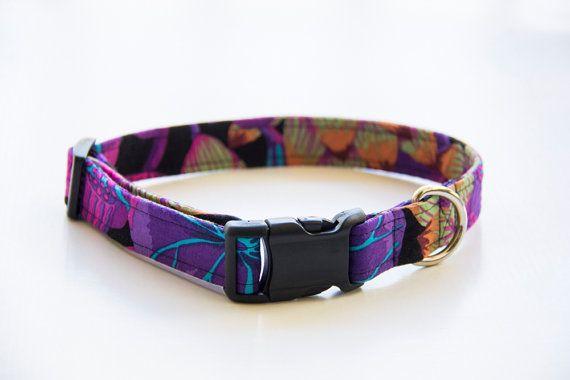 Spring dog collar Floral dog collar orange dog collar