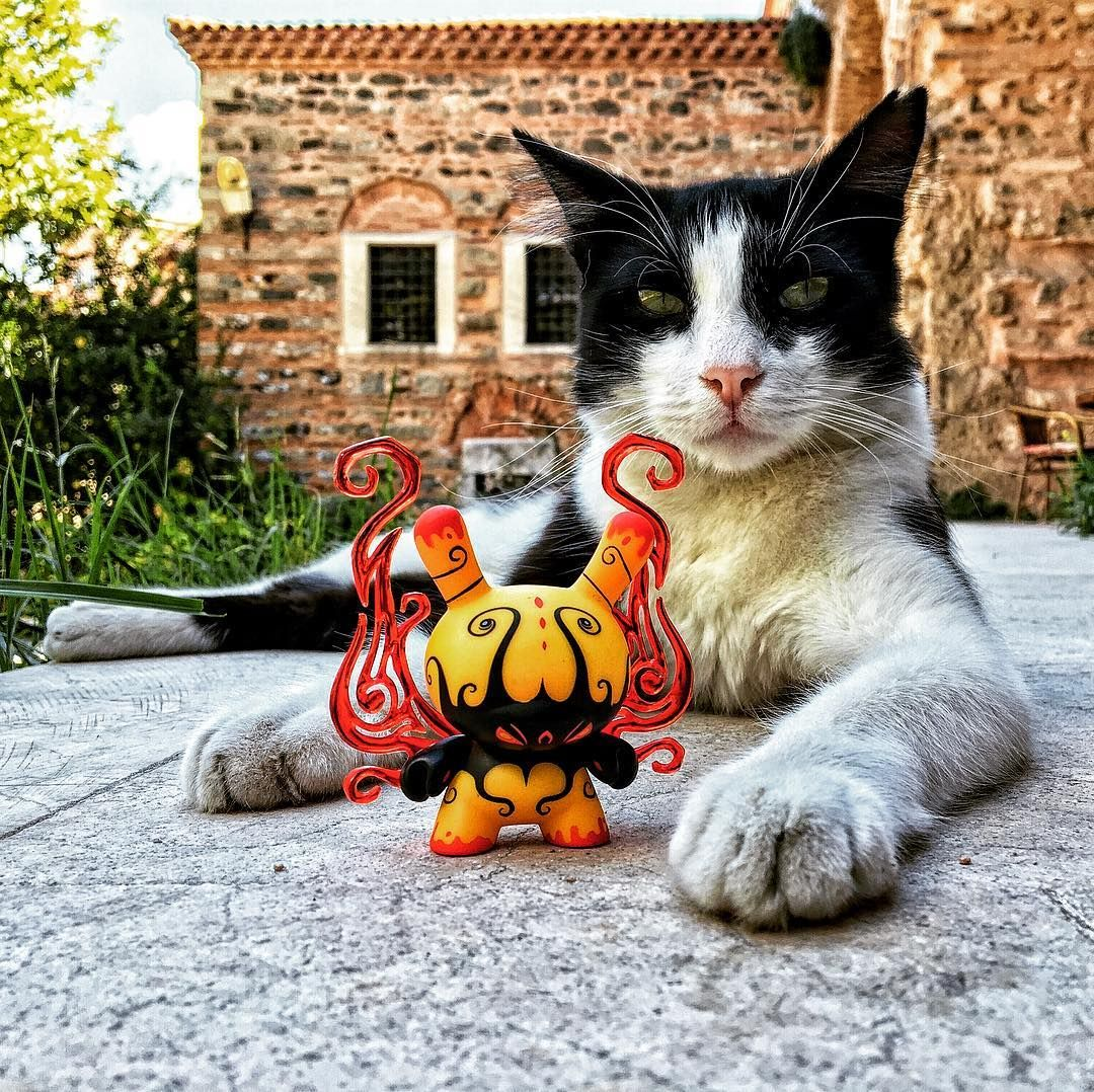Bad boys of Balat... #kidrobot #dunny #andrewbell #cat #catphotography