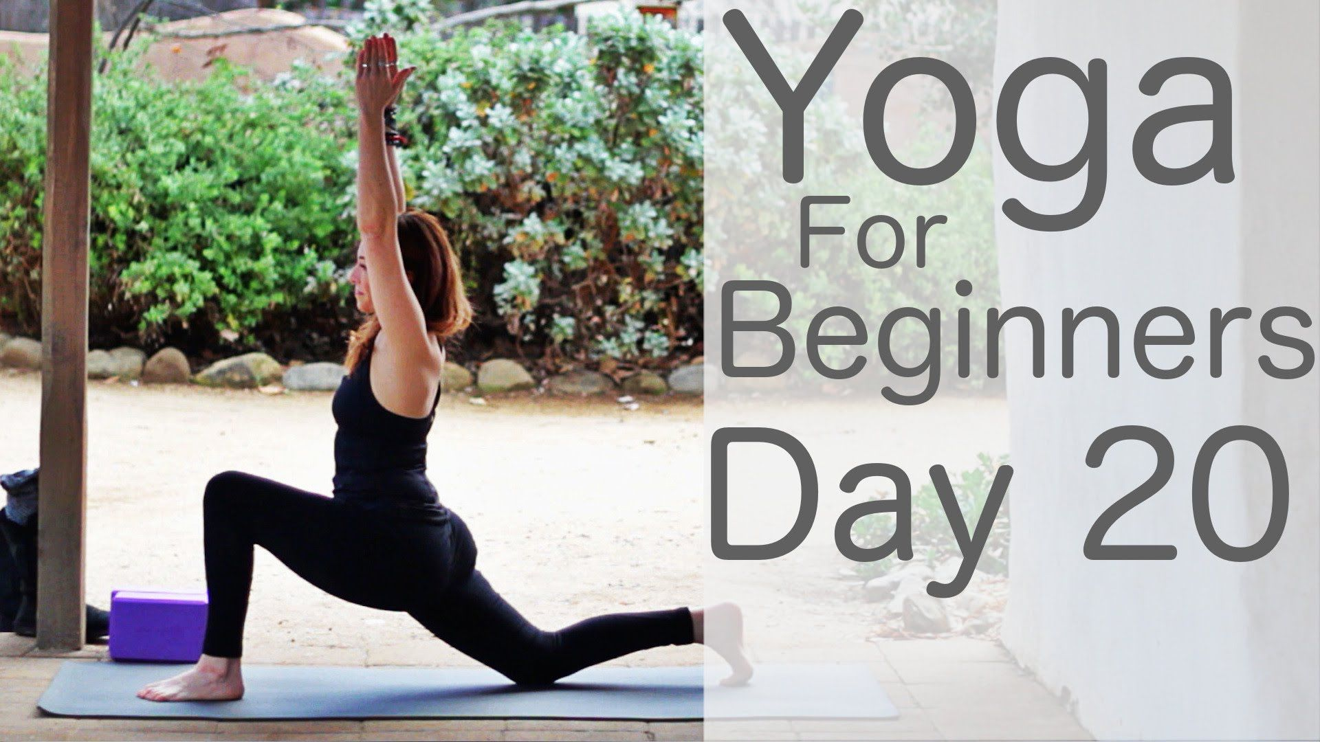 Yoga For Beginners 30 Day Challenge Day 20 with Lesley Fightmaster
