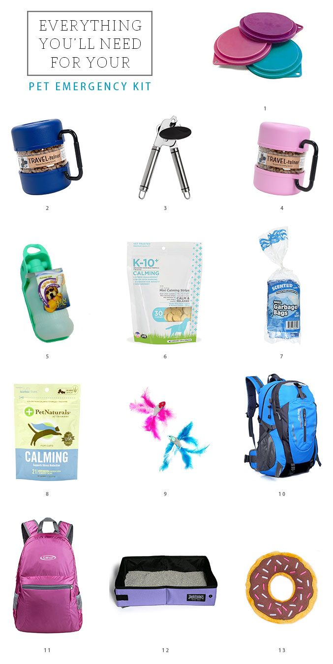 How To Put Together A Pet Emergency Supply Kit Pet Emergency Pet Emergency Kit Dog Emergency
