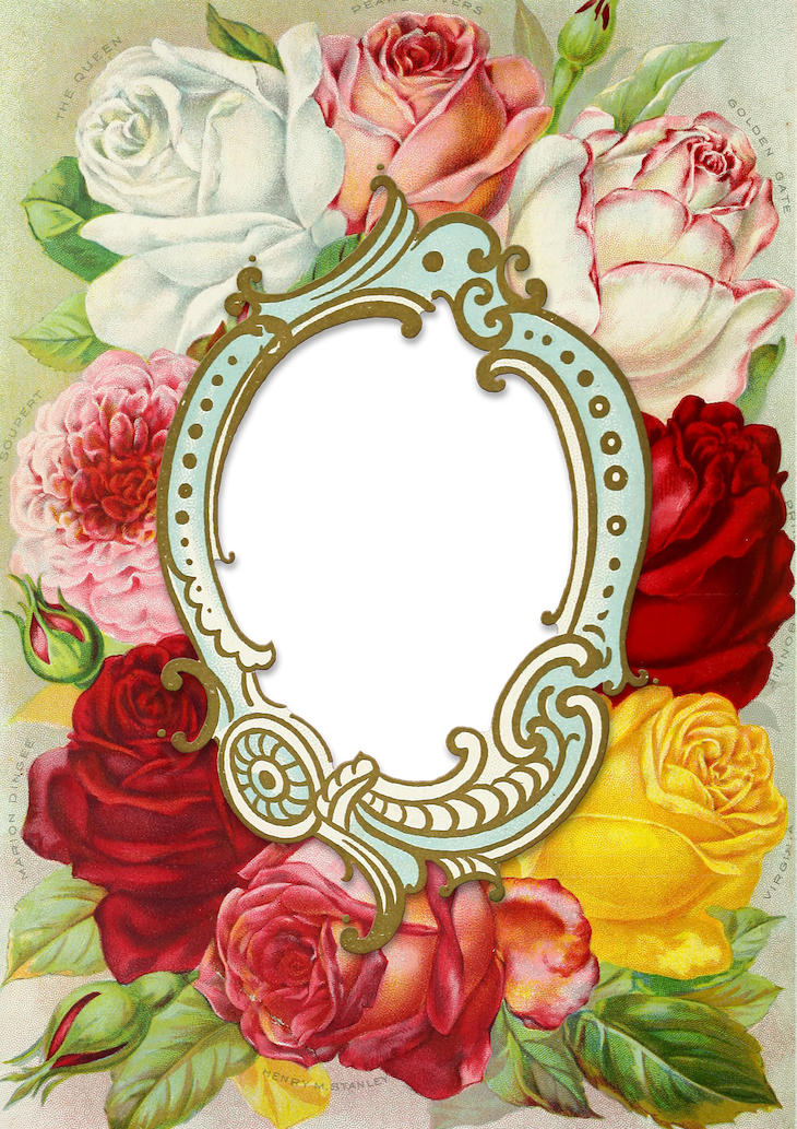 Wings of Whimsy: 1891 Dingee Conard Seed Catalog Frame