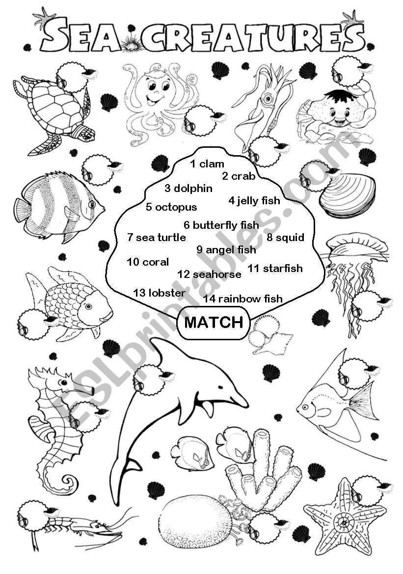 Rainbow Fish Printable Worksheets Sea Creatures Esl