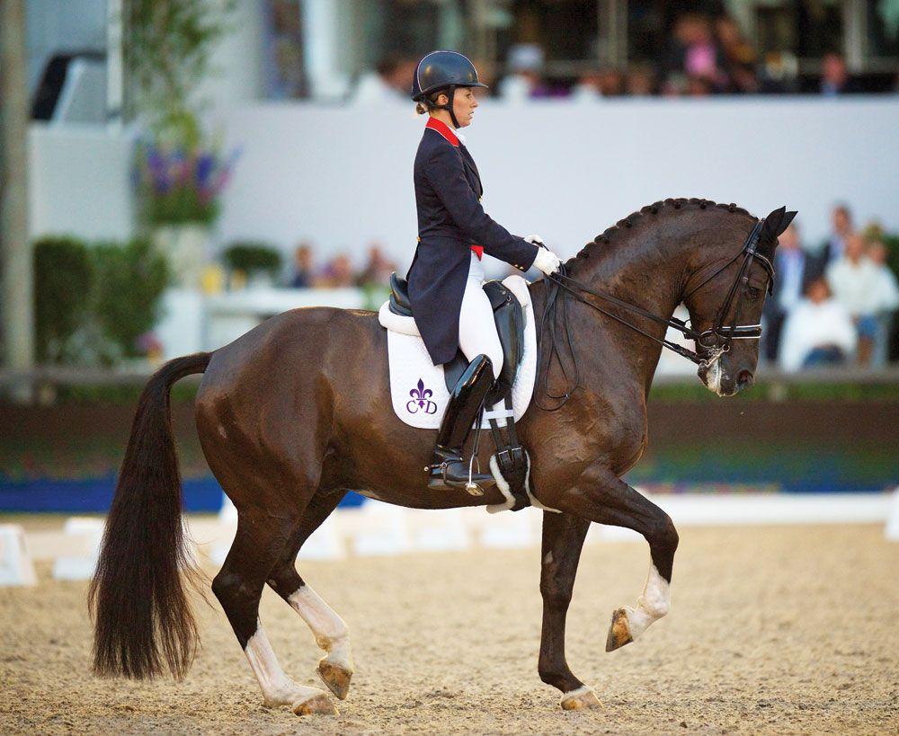 как фотографировать конный спорт резине при