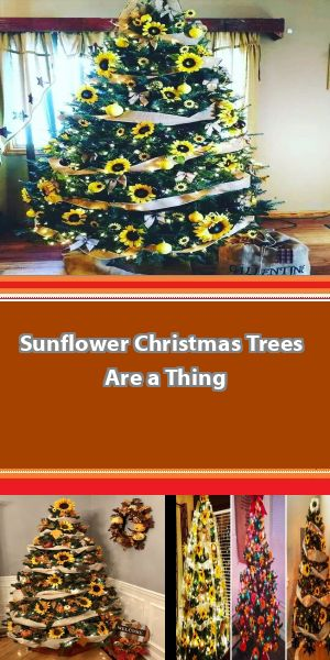 """A New Trend to Decorate Christmas Trees With Sunflowers Is Making Everyone Go """"Wow"""" Joining the best of both the worlds, people are now decorating their Christmas trees with sunflowers in the latest internet trend that's going viral. The idea is to spice up the look of our usual green Christmas trees by adding vibrant sunflowers along with baubles and other ornaments, and the result is simply magical. #sunflowerchristmastree"""