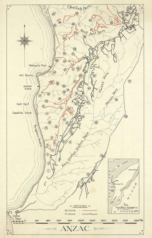 ANZAC map of Gallipoli showing positions of Australian ...
