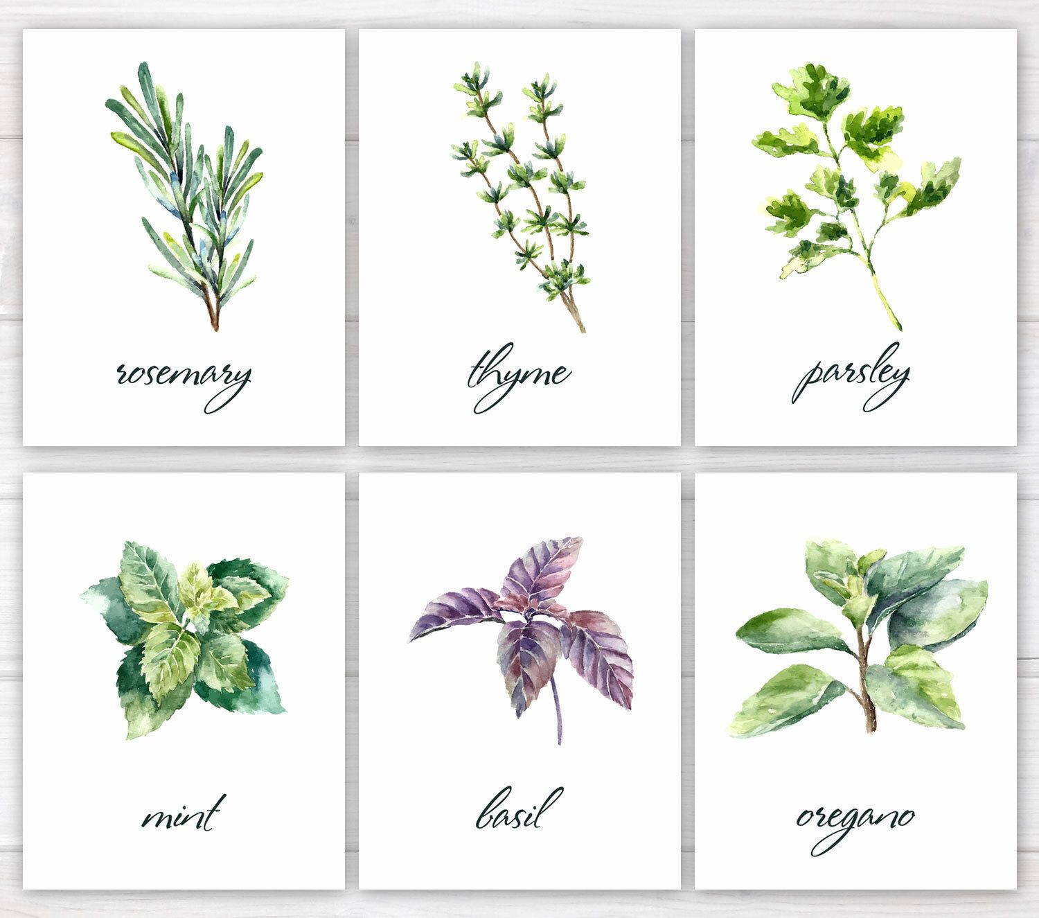 Herbs Print Kitchen Print Kitchen Printable Watercolor Herbs
