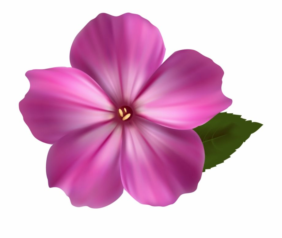 Download Flower Png Image Pink Clipart Realistic Flower Clip Art Png Images Backgrounds For Free Seach Flower Png Images Flower Clipart Photoshop Flowers