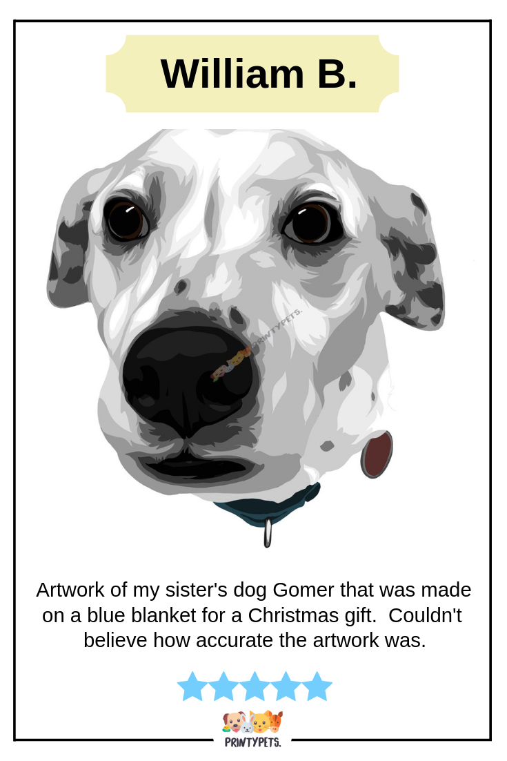 William B Highly Recommend Printypets For The Beautiful Artwork Of His Siste S Dog Gomer Fleeceblanket Printypets Revi Custom Pet Art Pets Dog Lovers