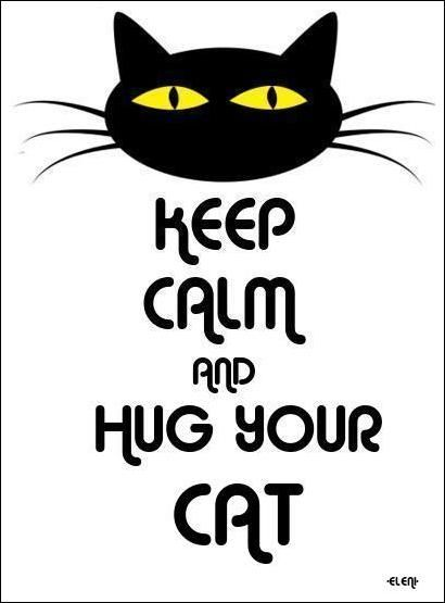 HUG YOUR CAT - created by eleni
