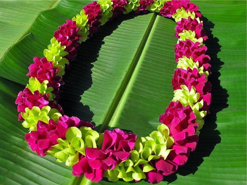 Fancy hawaiian flower leis lei away beautiful leis pinterest fancy hawaiian flower leis lei away izmirmasajfo