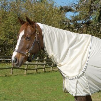 Got Flies Neck Cover Horse by ENGLISH RIDING SUPPLY. $29.65