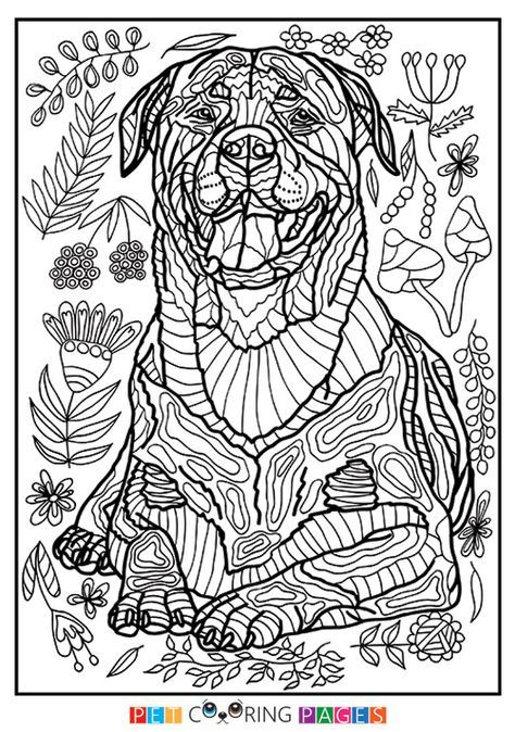 Rottweiler Coloring Page Hera Dog Coloring Page Animal
