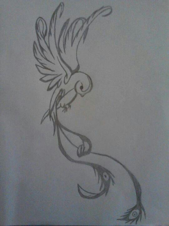 Quetzal Drawings Tatuajes De Aves Plumas Dibujos