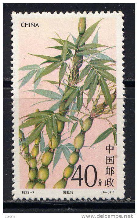 bambou - Delcampe.net