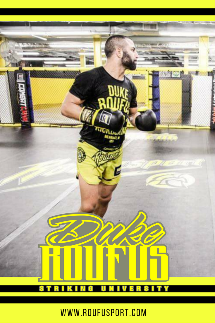 Online Mixed Martial Arts Course Online Kickboxing Certification