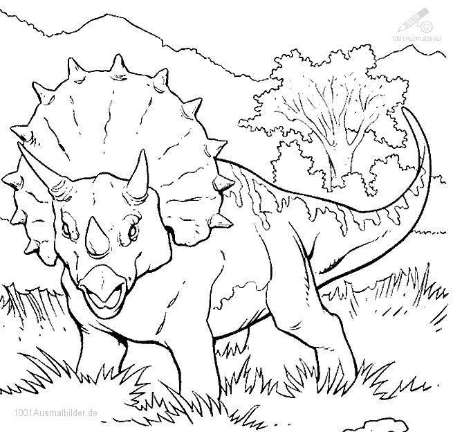 Ausmalbild Dinosaurier  Dinosaurier Malvorlage  Pinterest