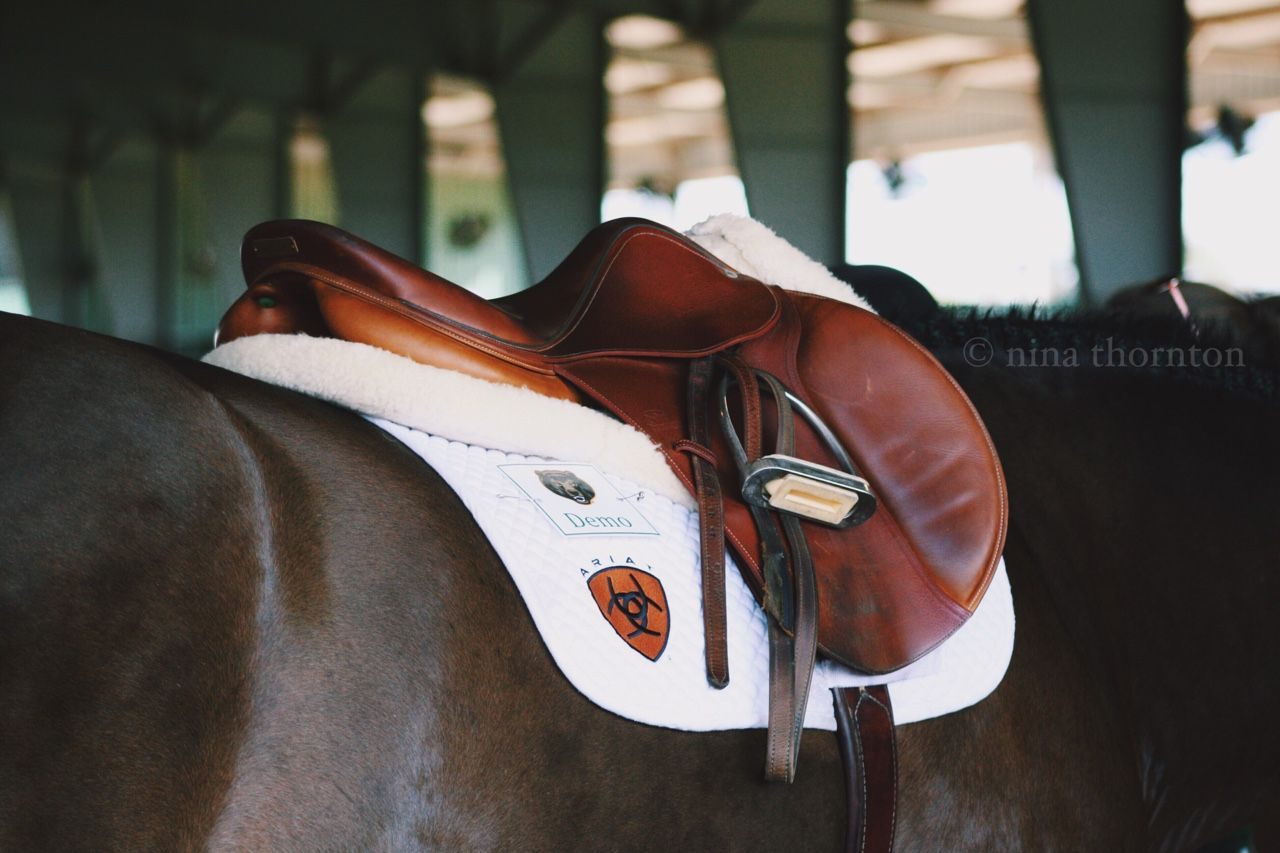 A Hunter Jumpers Life - ring-side: Devoucoux....