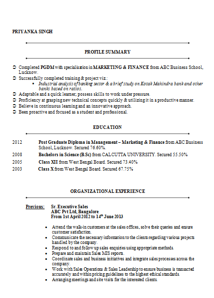 Mba Marketing  Finance Resume Sample Doc   Career