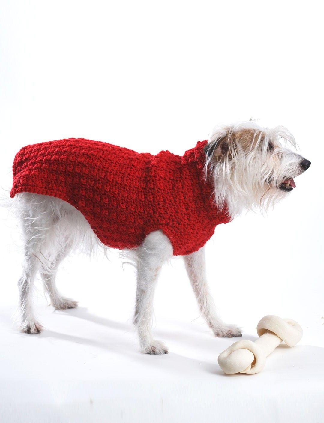 Hundepullover stricken - 42 warme Ideen + Strickanleitung - DIY ...