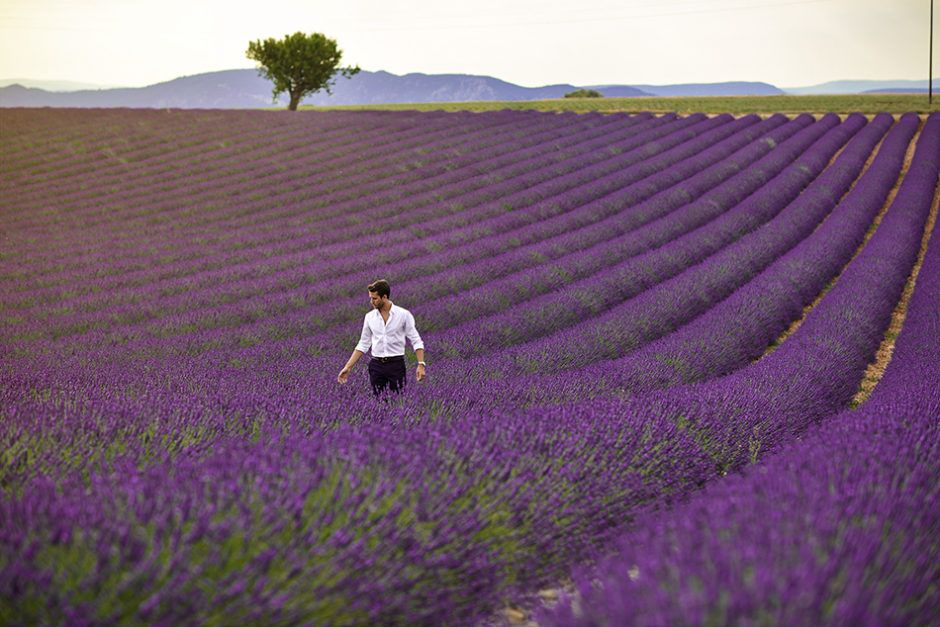 The Provence beauty is breathtaking.