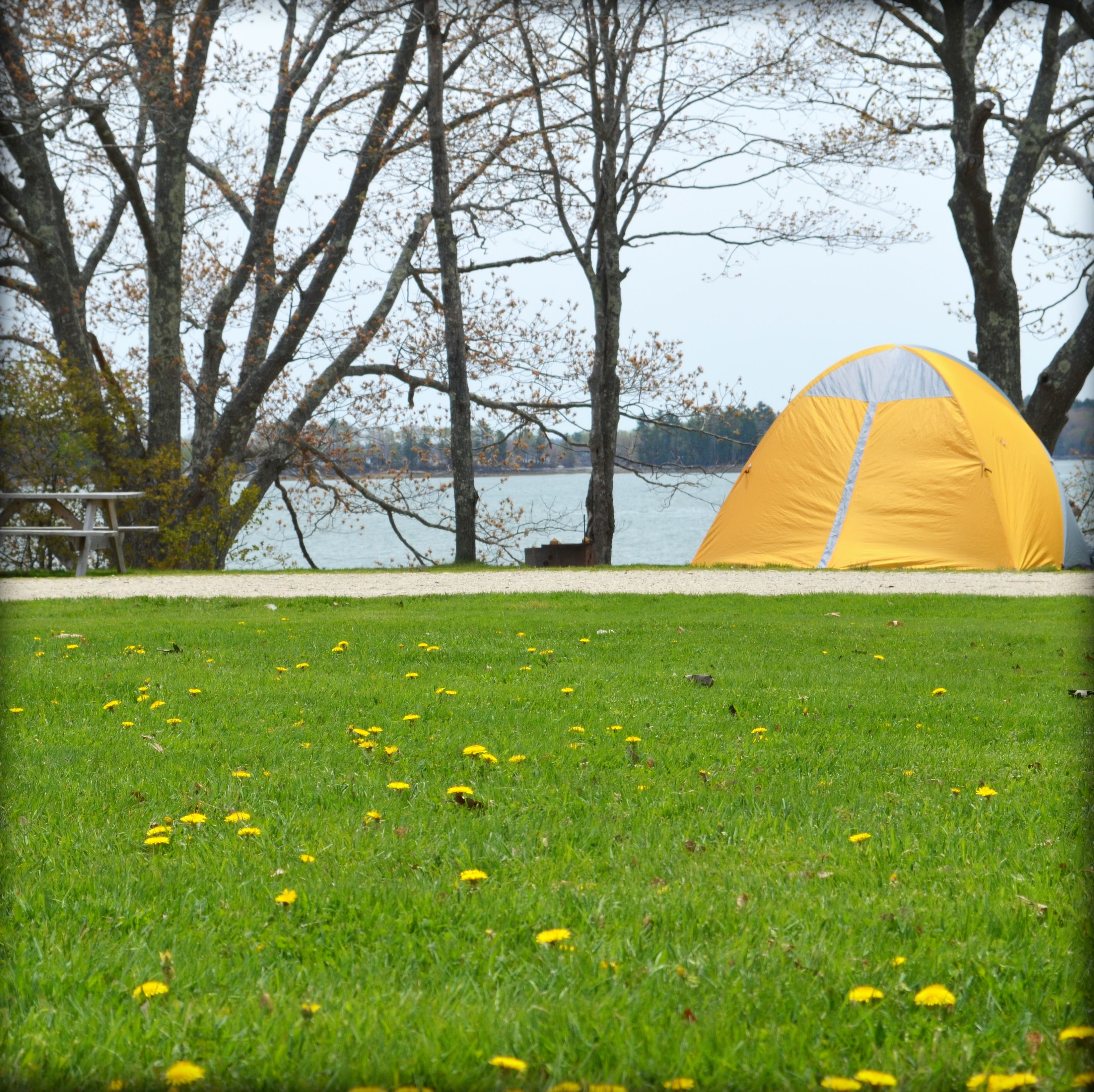 oceanfront camping in freeport maine recompence shore