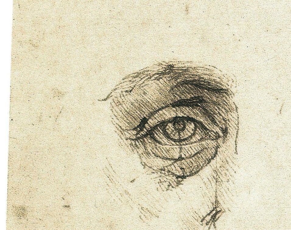 Piccole Note - Leonardo da Vinci, L\'occhio | Anatomy | Pinterest ...