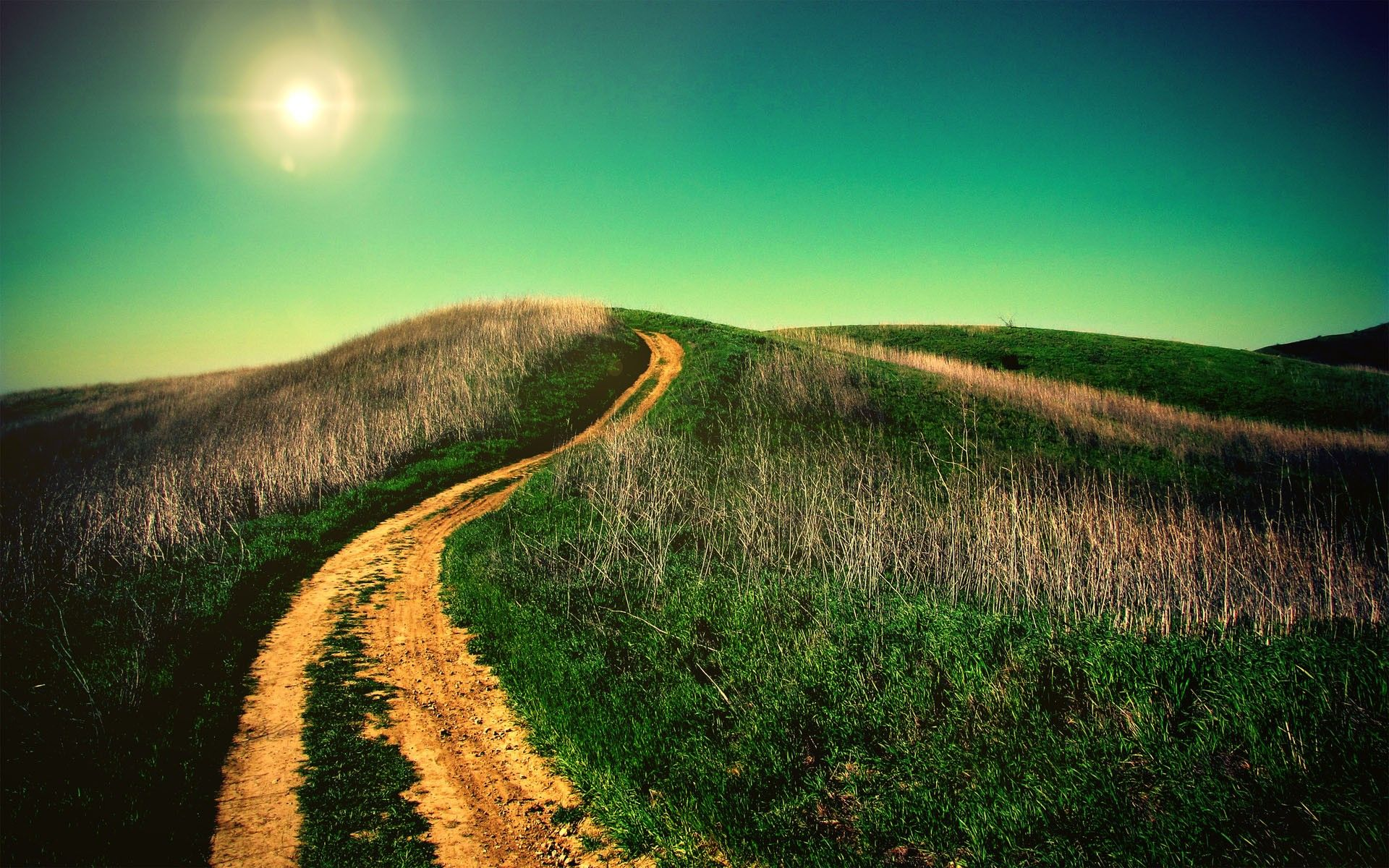widescreen full screen landscape tuscany green nature background