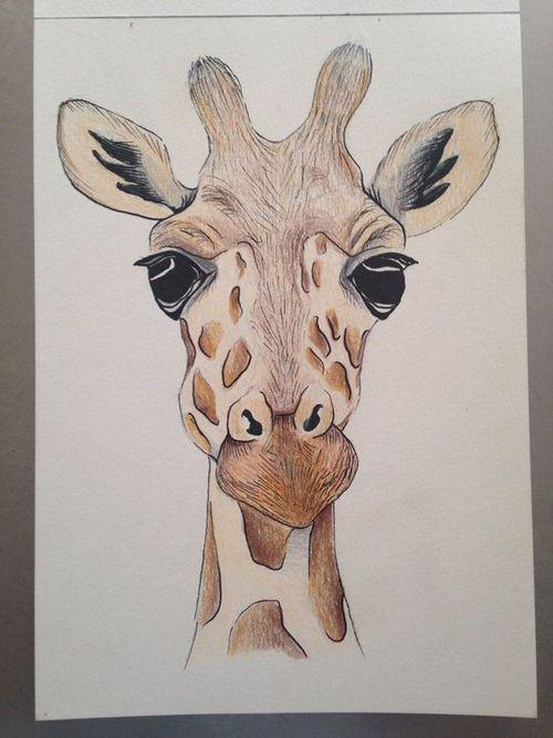 Pinterest audrabuffington art pinterest zeichnen for Pinterest malen