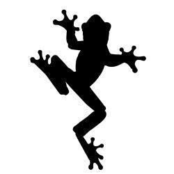 Black frog art - photo#50