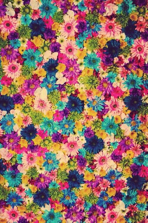 Flores Colores Myself Pinterest Wallpaper Iphone Wallpaper Y