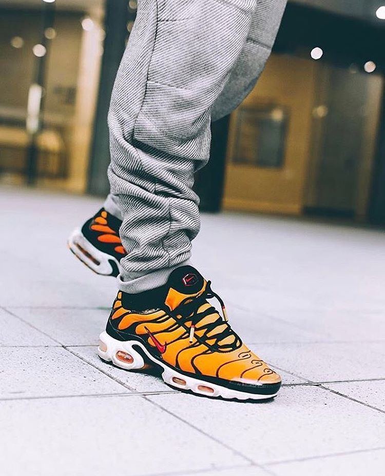 Cuyo intimidad Final  SADP : @nikesportswear Air Max Plus OG Tiger by @liamparsons4 Use the  hashtags #SADP and #SneakersAddict … | Nike shoes outlet, Nike air max tn,  Sneaker collection