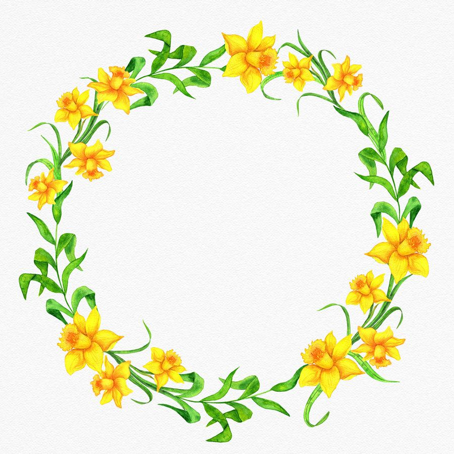 Yellow Daffodils Wreath Clipart Floral Watercolor Frame Easter Flowers Clipart Border Png Watercolor Digital Download Flower Border Png Floral Watercolor Yellow Daffodils