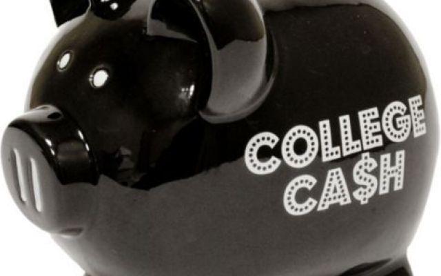 Guadagnare con CashPiggy: scopri come fare #cashpiggy #guadagnare #soldi #online #ptc