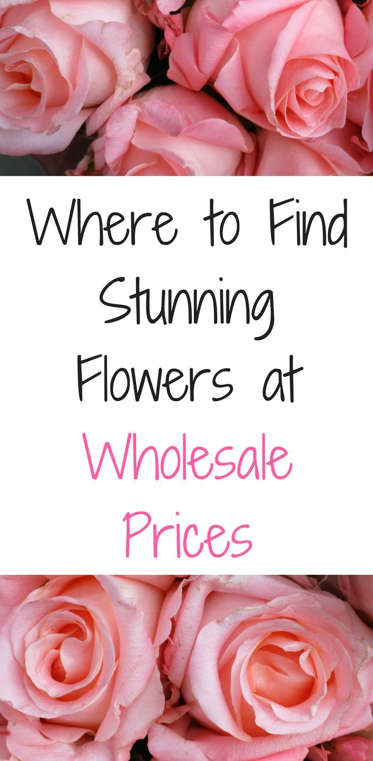 How to make money flower arranging top blogs pinterest viral if you are looking for wholesale flowers to create a beautiful bouquet for your wedding then izmirmasajfo