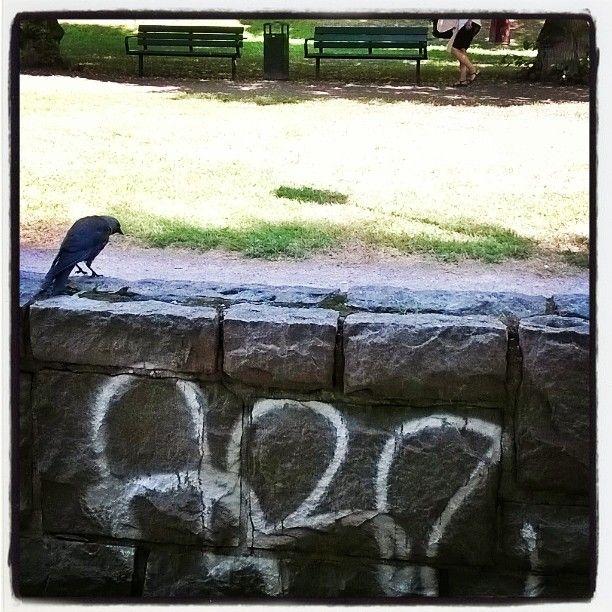 #naakka ja #katutaidetta #Tukholmassa #klotter #streetart #park #graffiti 27/7/17