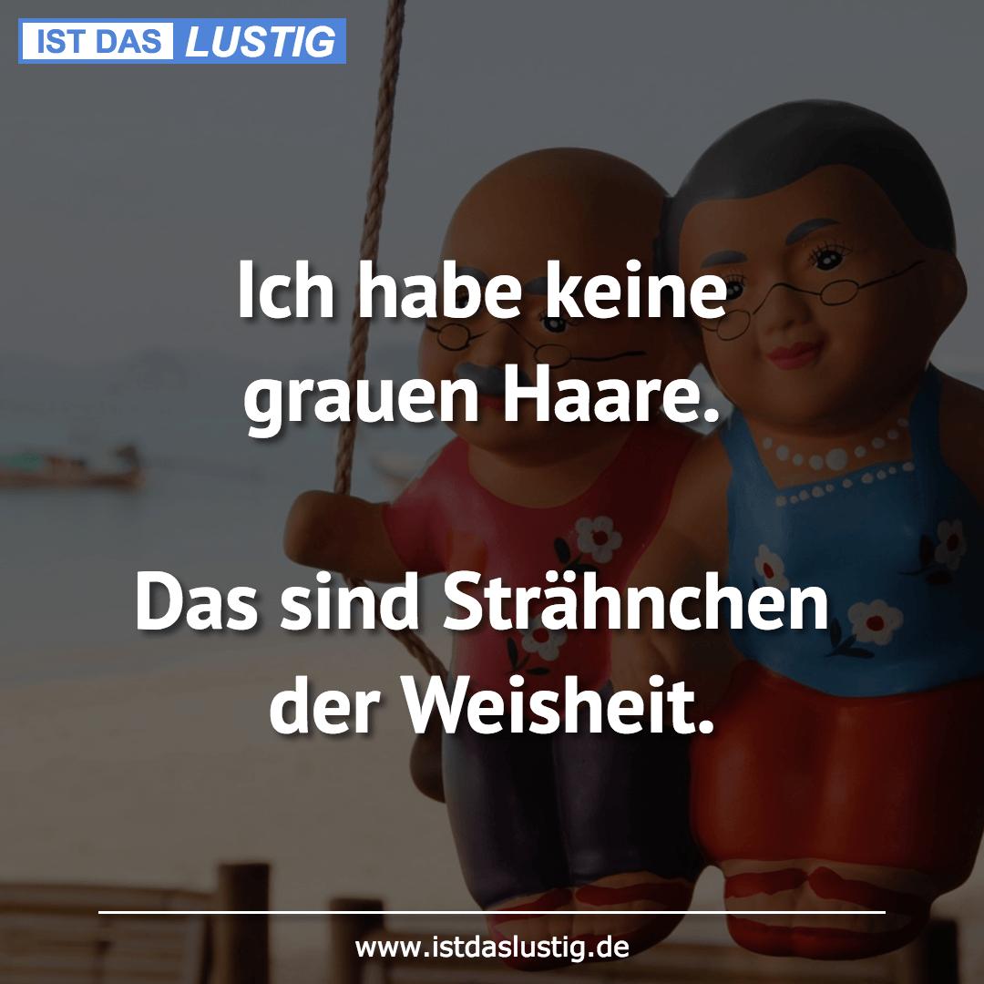 Ich Habe Keine Grauen Haare Das Sind Strahnchen Der Weisheit Life Humor German Quotes True Words