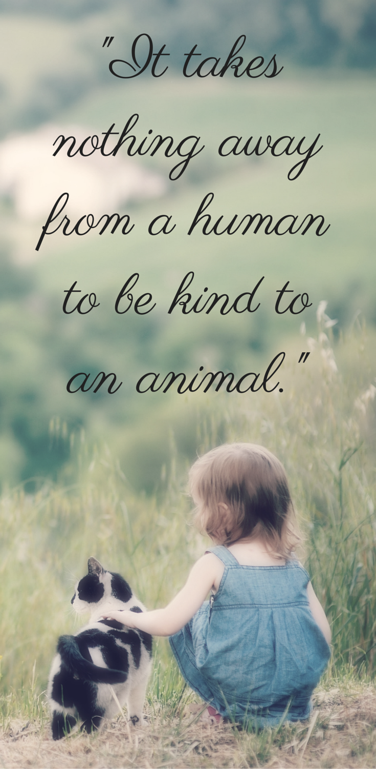 Cute animals with love quotes - photo#28