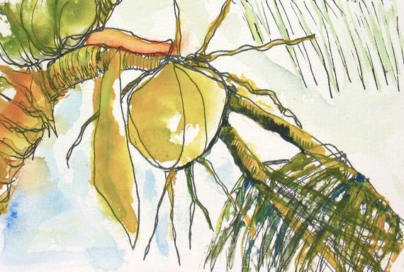 Art Painting Watercolor Tropical Coconuts Palm Tree Print Tree