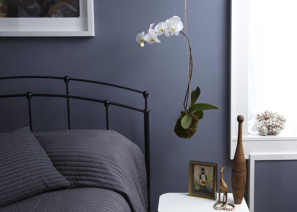 Bedroom | by twigterrariums