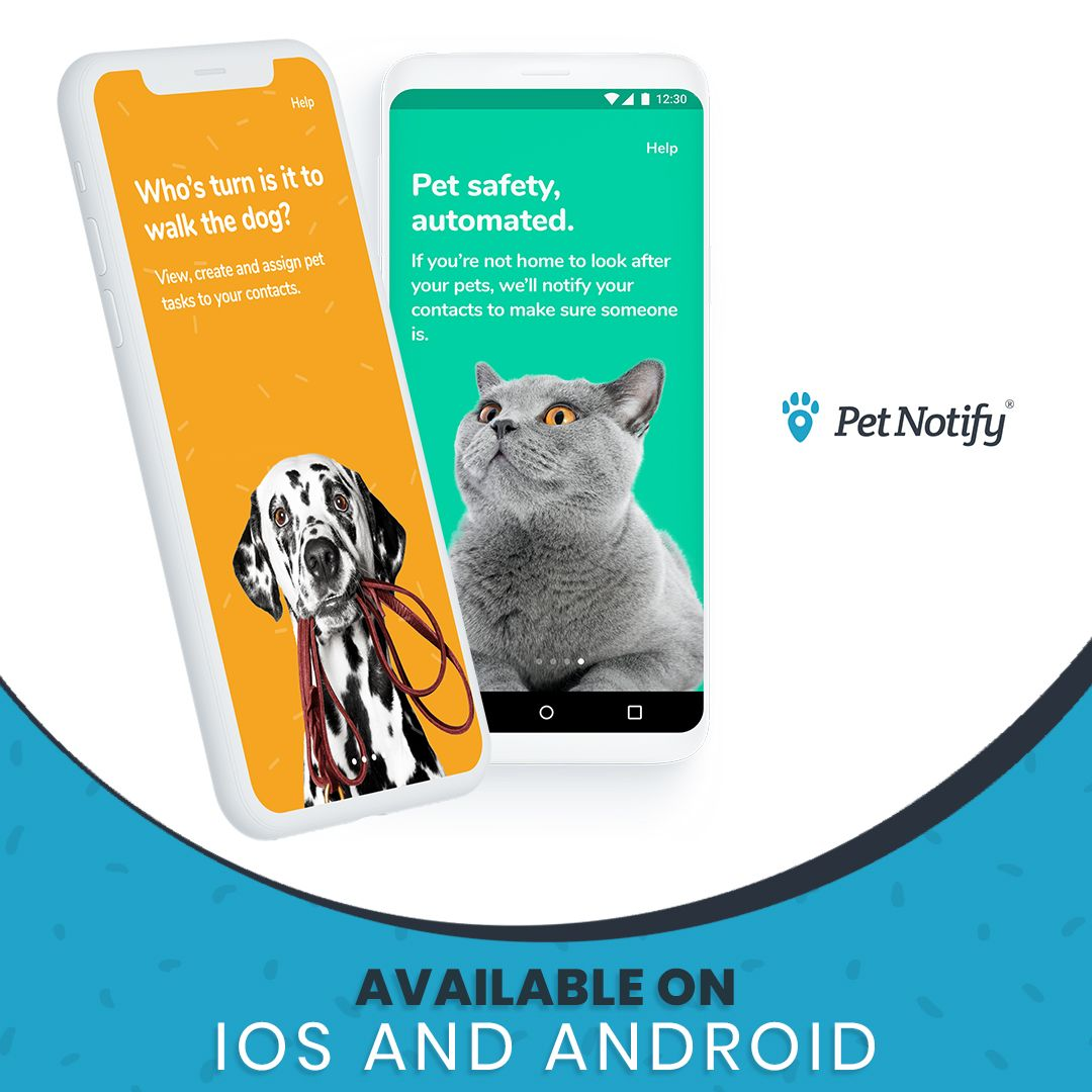 We Re Happy To Share With You That The Petnotify App Is Available
