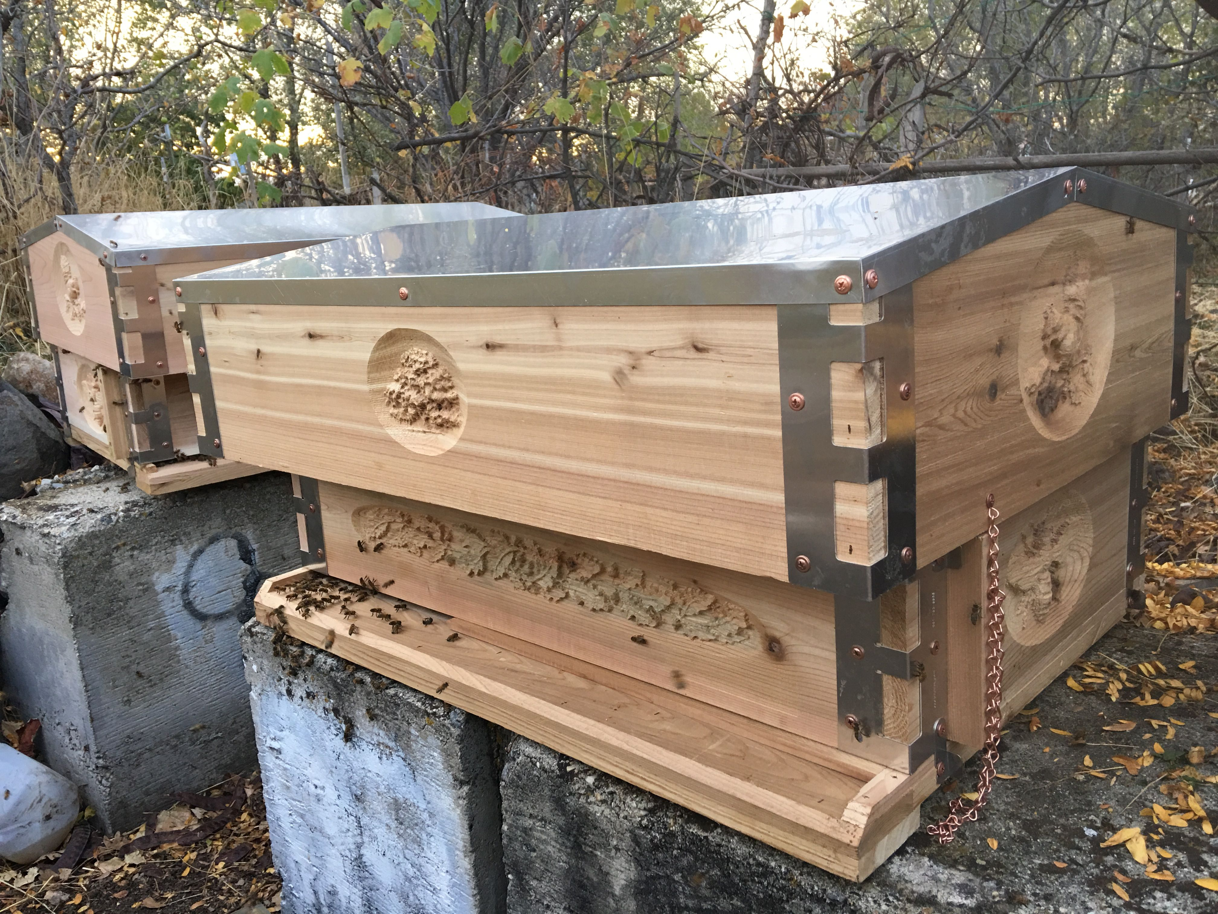 "Eco Bee Box ""Bee Sanctuary"" Horizontal Langstroth Beehive"