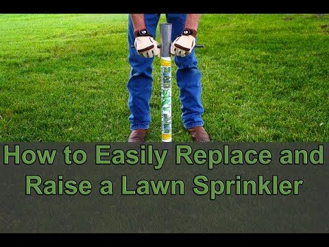 Diy Easily Raise Or Replace A Lawn Sprinkler Head Without