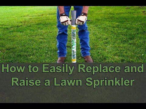 Diy Easily Raise Or Replace A Lawn Sprinkler Head Without Digging Youtube Lawn Sprinklers Sprinkler Sprinkler Heads