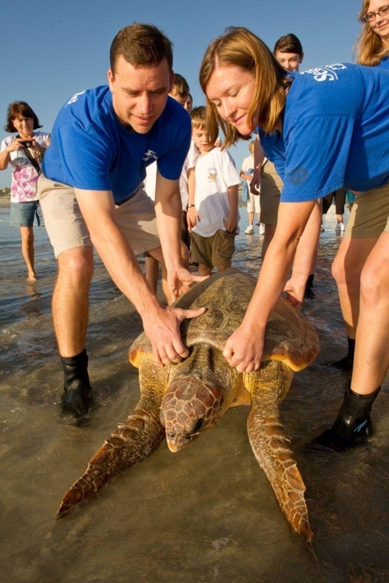 passer un mois de redonner à la Nature Sea world