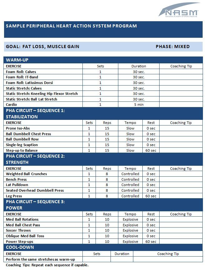 Training Programs NASM Templates Workout template, Workout