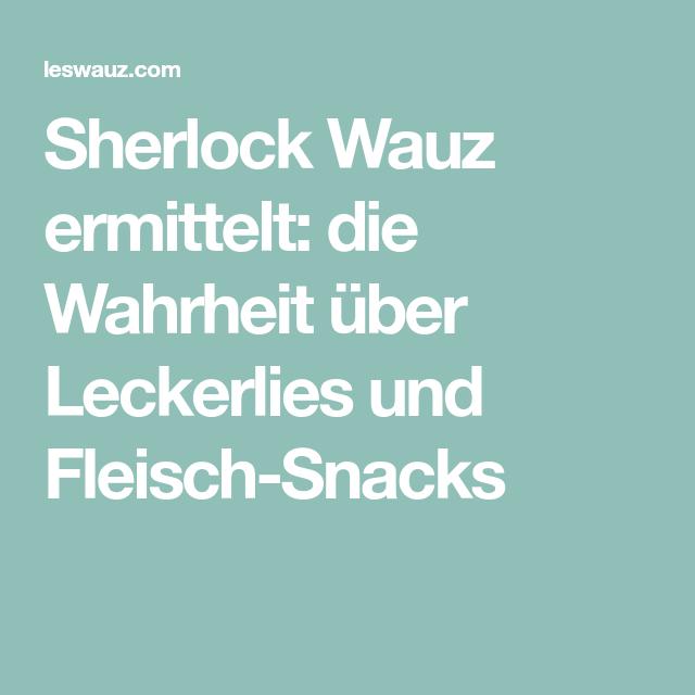 Für den kleinen Sherlock Wauz: Intelligenzspielzeuge für