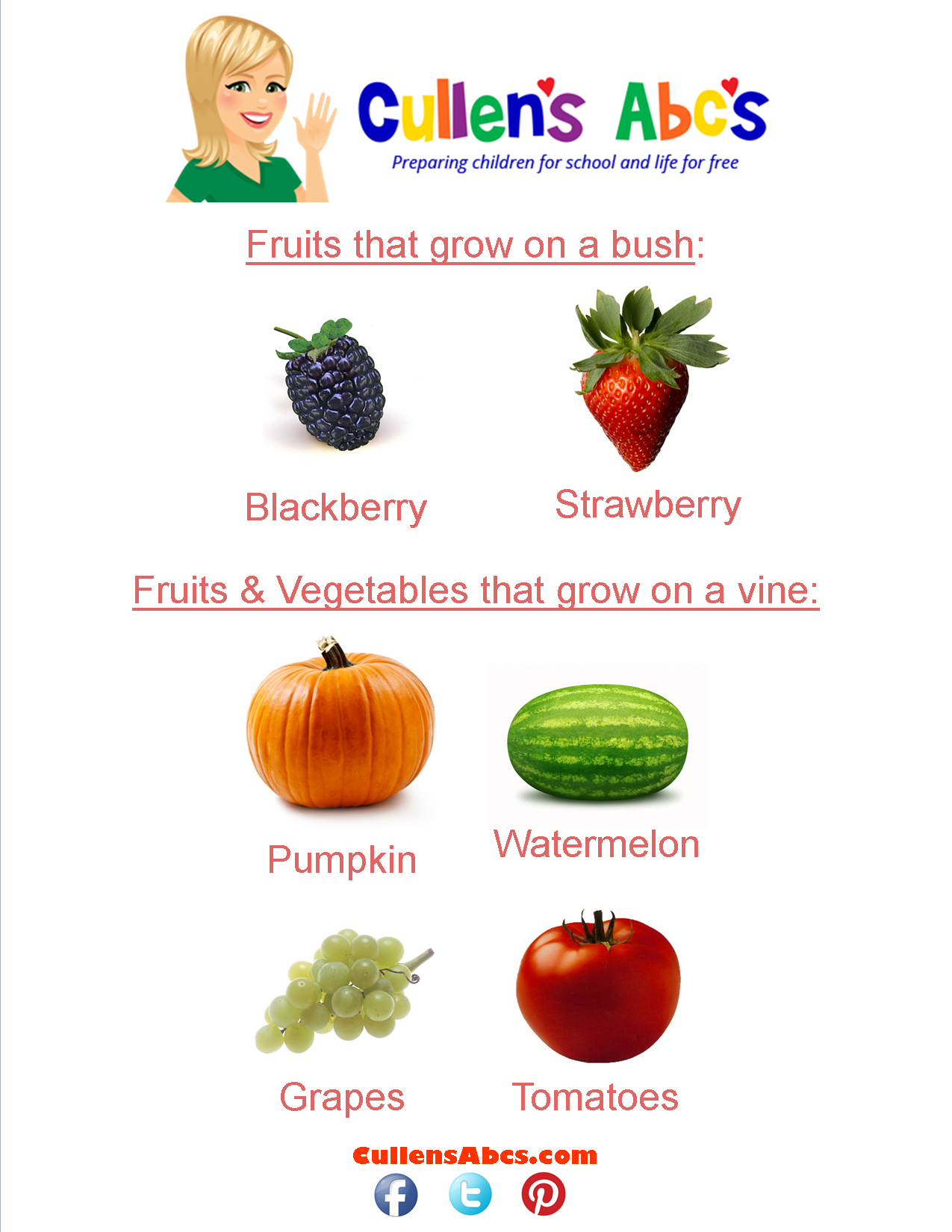Where Fruits Amp Vegetables Grow