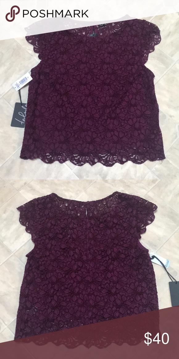 ac2e7172071 NWT ARITZIA Talula Lace Portobello Blouse Size S • BRAND NEW • NEVER WORN  Color