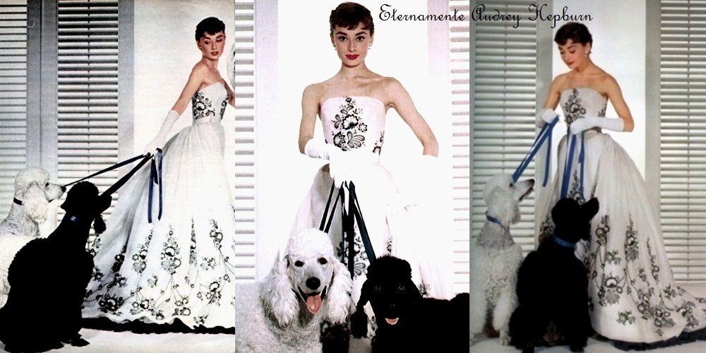 Fotos promocionais de Sabrina, 1954