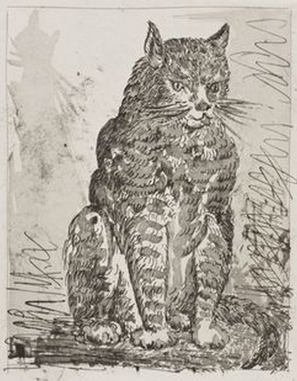 The Cat, 1936. Pablo Picasso